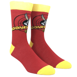 2 Pair Pack Looney Tunes Socks - The Sock Spot