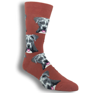 Socks - Pit Bull Face Socks - Orange