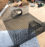 24X24X8.5 Oregon Commercial Coonstripe Shrimp Trap