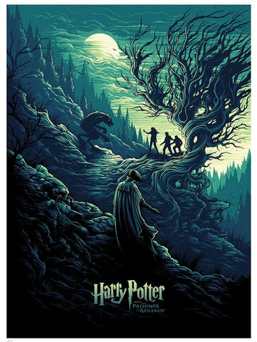 Harry Potter - Harry Potter & the Shadow of the Werewolf Limited Edition Print