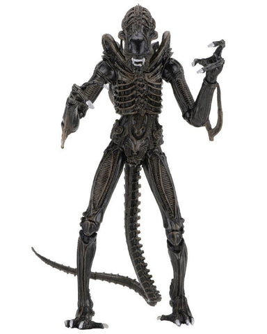 "Aliens - 7"" Ultimate Alien Warrior 1986 Brown Action Figure - Pre-Order"