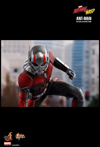 Ant-Man and the Wasp - Ant-Man 1:6 Scale Action Figure - Pre-Order