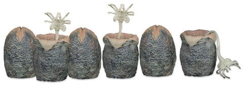 Alien - Xenomorph Eggs in Carton (Set of 6)