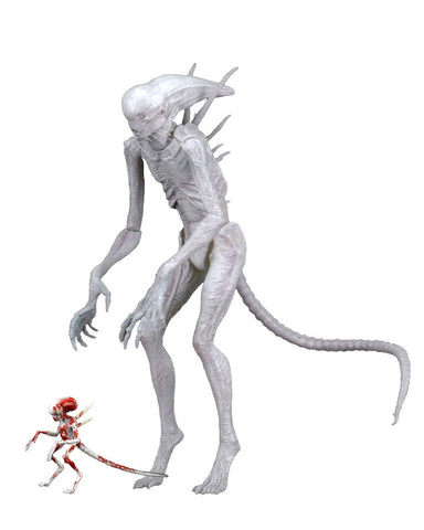 "Alien Covenant - 7"" Neomorph Action Figure"