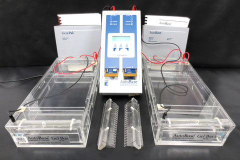 Complete Pulsed Field Gel Electrophoresis System by Q-Life GenePak Autobase ZIFE