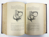 Antique 1894 Medical Obstetrics Book by Lepage/Ribemont, 476 Illustrations, Childbirth