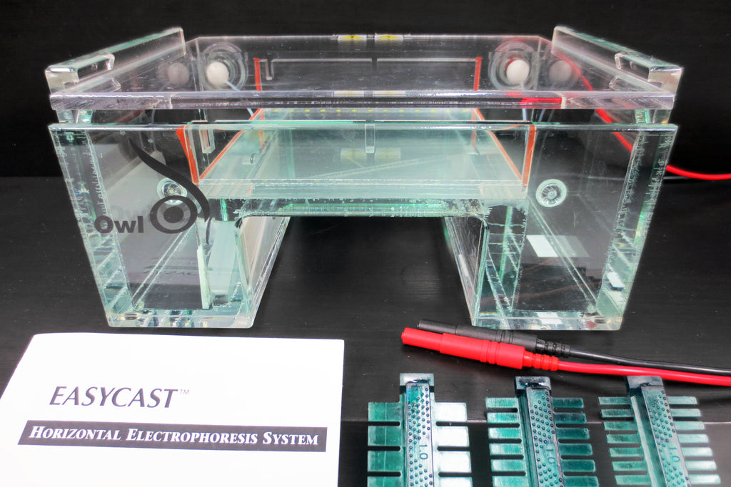 "Owl EasyCast B3 9"" DNA Agarose Gel Electrophoresis System, Tray, 3 Combs, Manual"