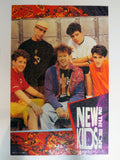 1990's Giant Puzzle Poster 2X3 Feet of the New Kids on the Block, Donnie Wahlberg