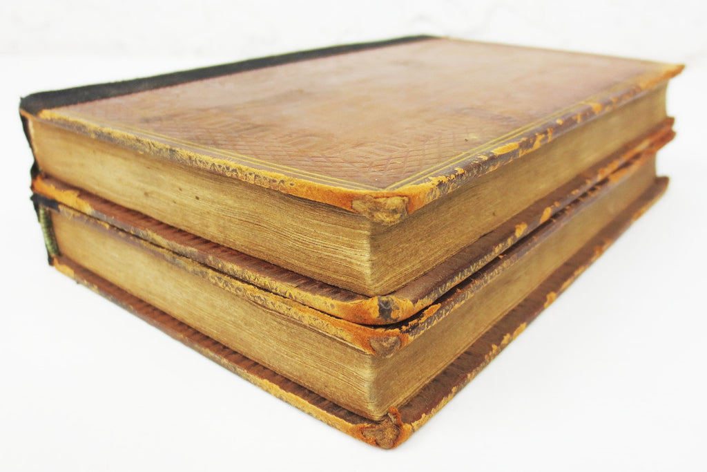 Antique 1820 New Edition Zeluco Human Nature, Life & Manners by Dr. Moore, 2 Volumes