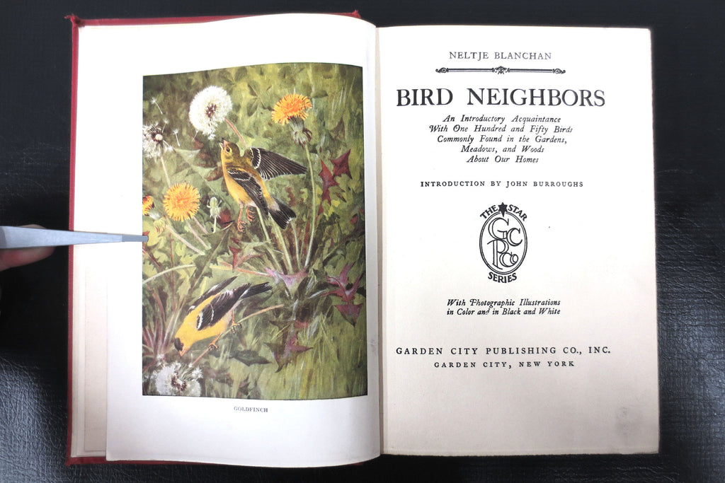Antique 1922 Bird Neighbors Book by Neltje Blanchan, Color and B&W Plates