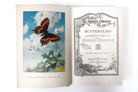 Antique Book on Butterflies by Dr Clarence Weed, 48 Full Color Illustrations
