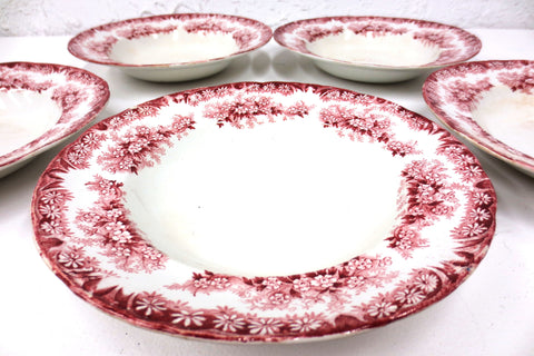 "5 Antique Dudson Wilcox & Till Porcelain Soup Bowls 9"" Hanley England Daisy Red"