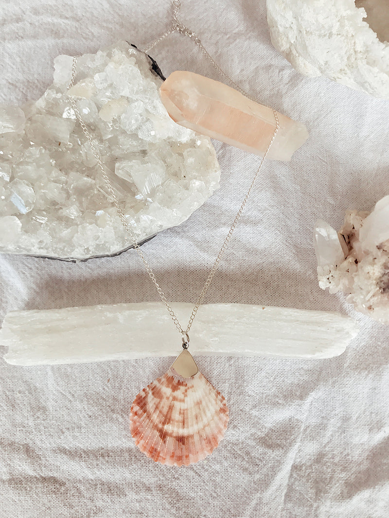 The Mermaid Shell Necklace - long
