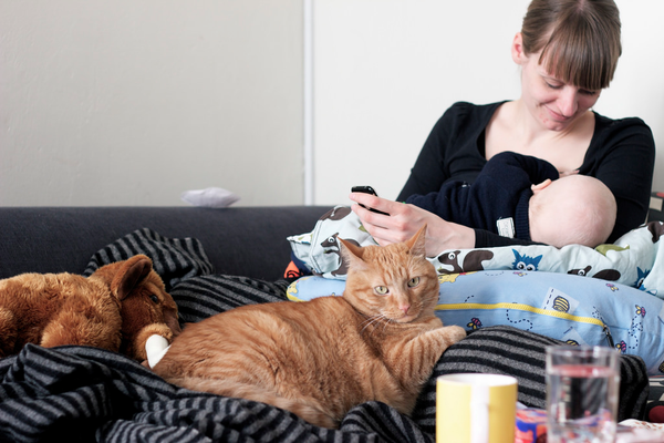 Mom breastfeeding baby on couch with cat