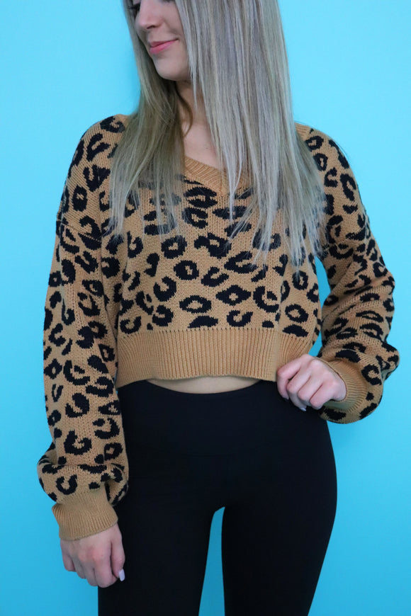 Calvert Cropped Leopard Sweater