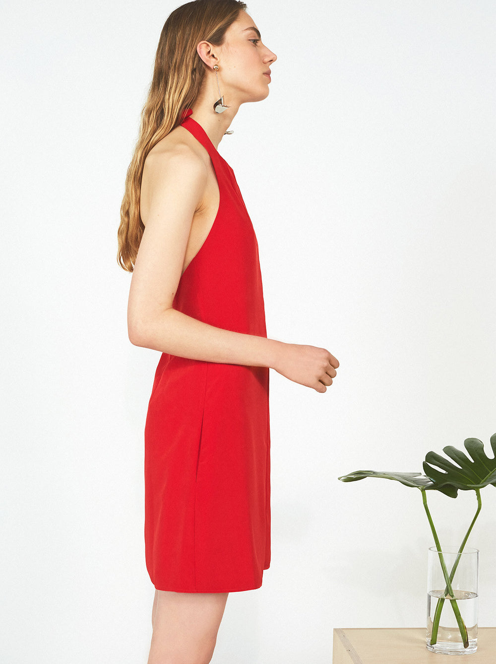 Tamara Halter Neck Dress