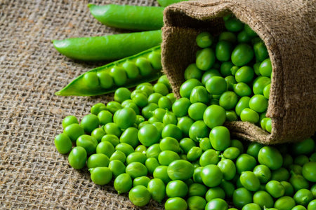 PEA PROTEIN - NATURALLY VEGAN