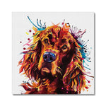 Irish Setter Canvas