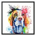 English Pointer Framed Canvas
