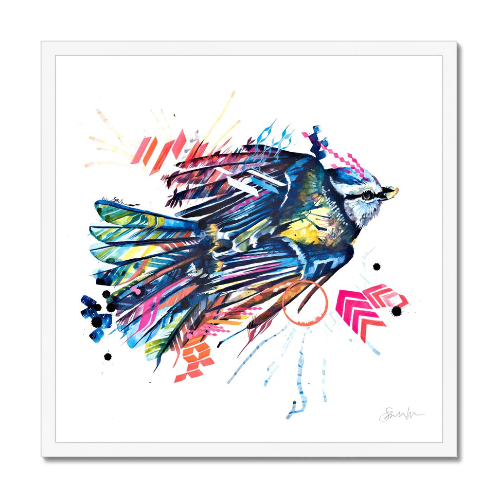 Basil the Blue Tit Framed Print