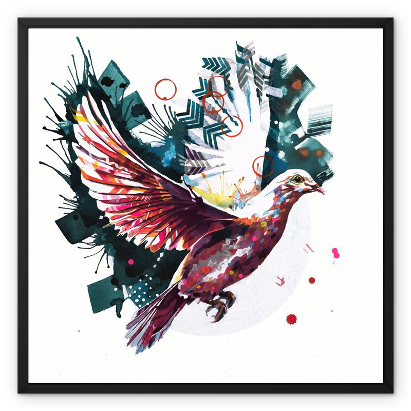 The Dove from Above Framed Canvas