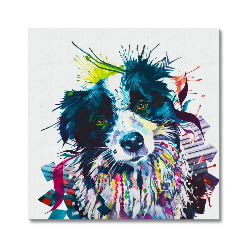 Border Collie Canvas