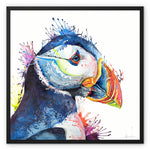 Peter Puffin Framed Canvas