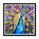 Dylan the Peacock Framed Print