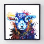 Florence - Original Sheep Painting