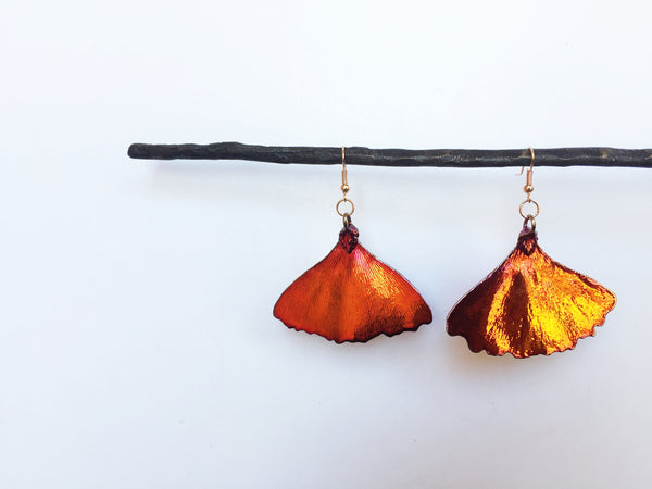 Real Gingko Leaf Earrings
