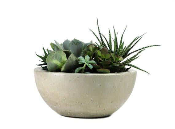 "Concrete Bowl 8"" (More Options)"