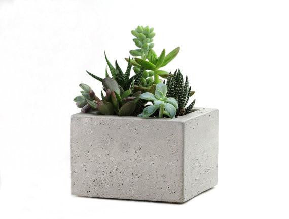 Square Concrete Mini Planter (More colors)