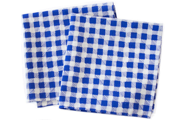 Picnic Check Napkin Set (More Colors)