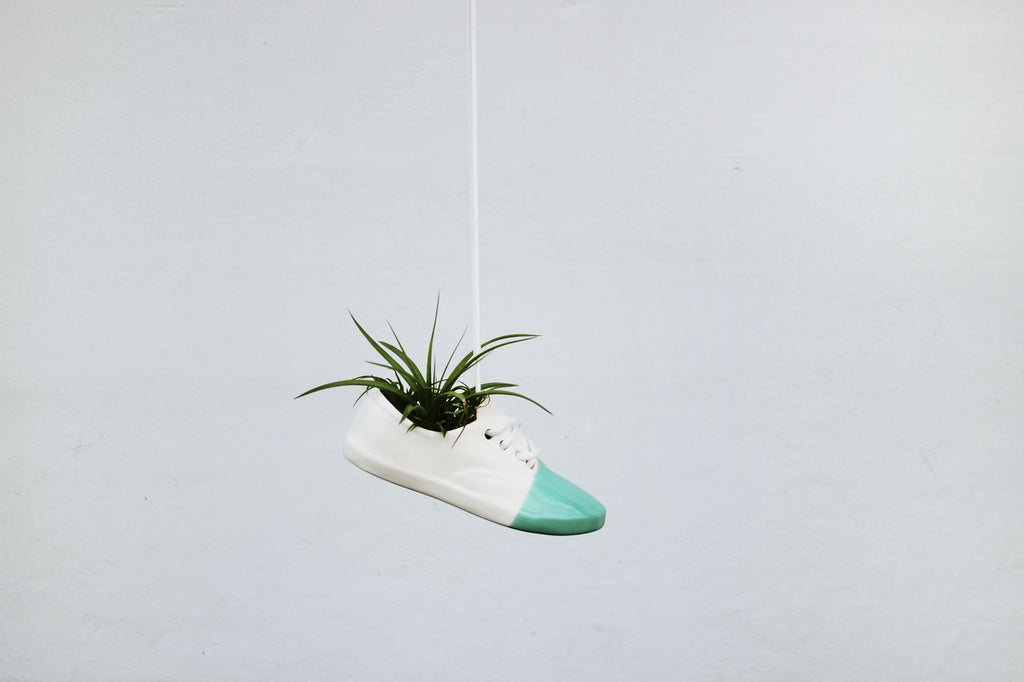 Exclusive Mint Shoe Pot
