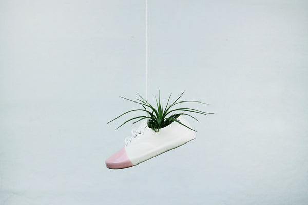 Exclusive Pink Shoe Pot