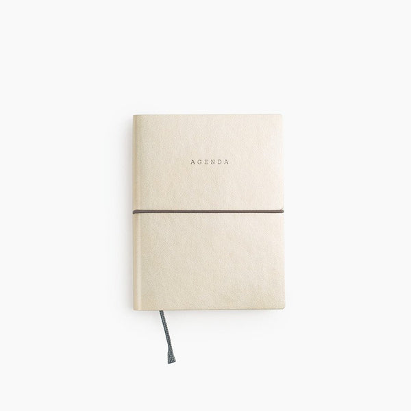 Agenda Planner (More Colors)