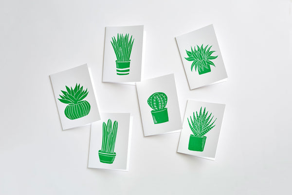 Succulent Cards (Set of 6)