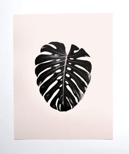 Monstera Leaf + Fan Palm Art Print