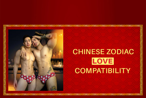 CHINESE ZODIAC LOVE COMPATIBILITY. who am i compatible with. what is my chinese horoscope. chinese horoscope. happy chinese new year. chinese new year. happy cny. chinese zodiac