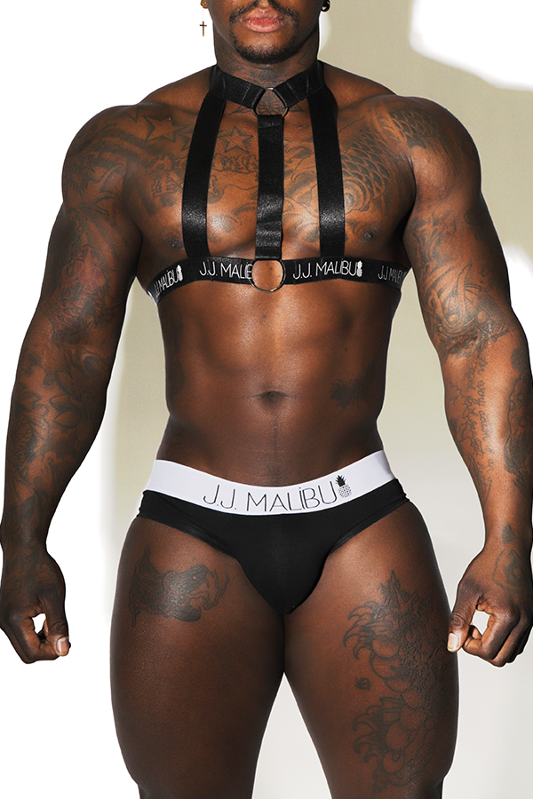 Prisoner Harness