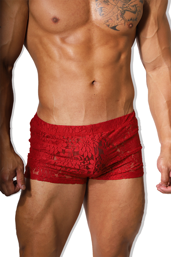 Kiss N Tell Lace Short Shorts - Burgundy