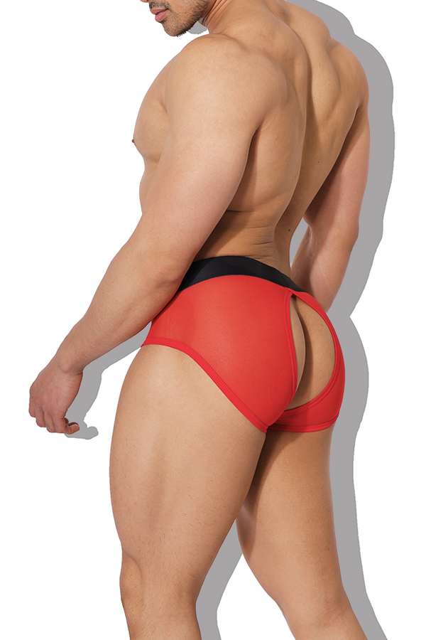 Privacy Mesh Briefs - Red