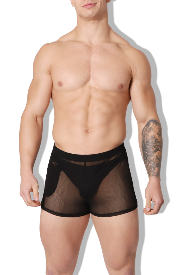 Stupid Love Sheer Mesh Short Shorts - Black