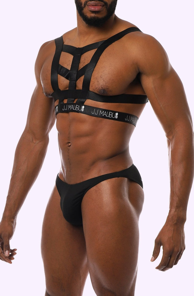 Vixen Harness