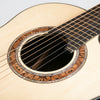 Greenfield G1.2-7 String Acoustic Guitar, Ziricote & Adirondack Spruce - Pre-Owned