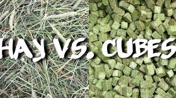 Hay or Cubes that is the Question!