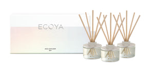 Mini Reed Diffuser Set