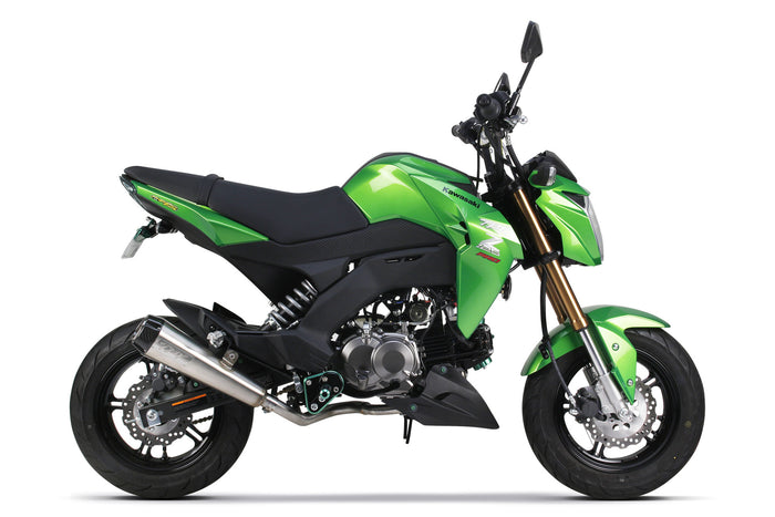Kawasaki Z-125 Full Systems (2016)