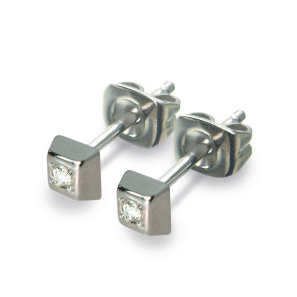 0538-01 Boccia Titanium Earrings
