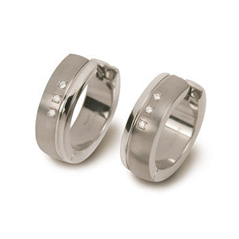 0539-13 Boccia Titanium Earrings